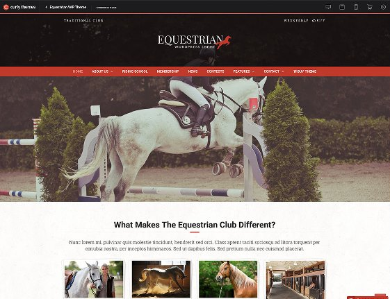 Website Hewan Equestrian