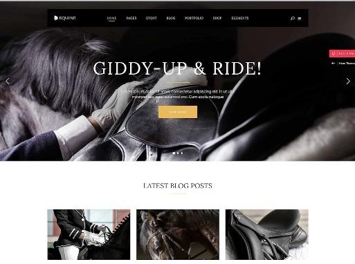Website Hewan Equine