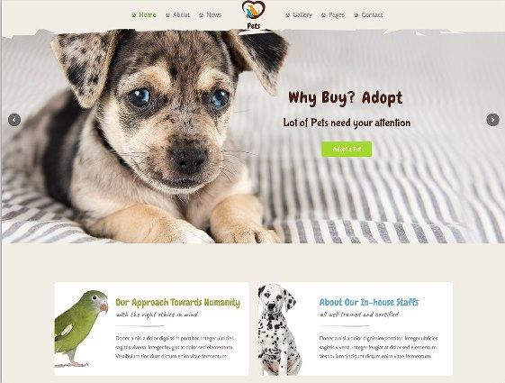 Website Hewan petsworld animal shelter wordpress theme