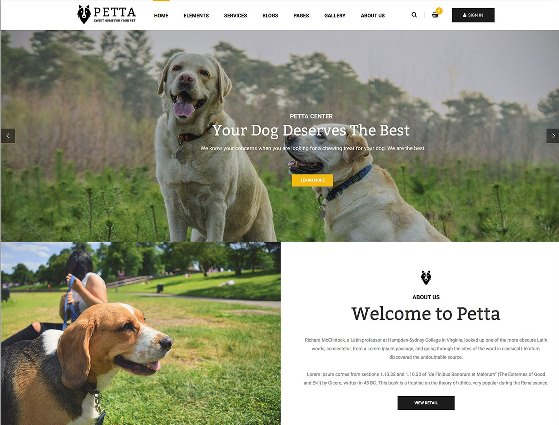 Website Hewan petta animal wordpress website template