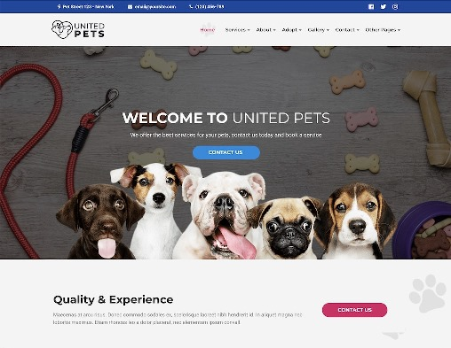 Website Hewan united pets animal wordpress theme